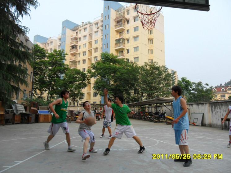 2011三三制篮球赛